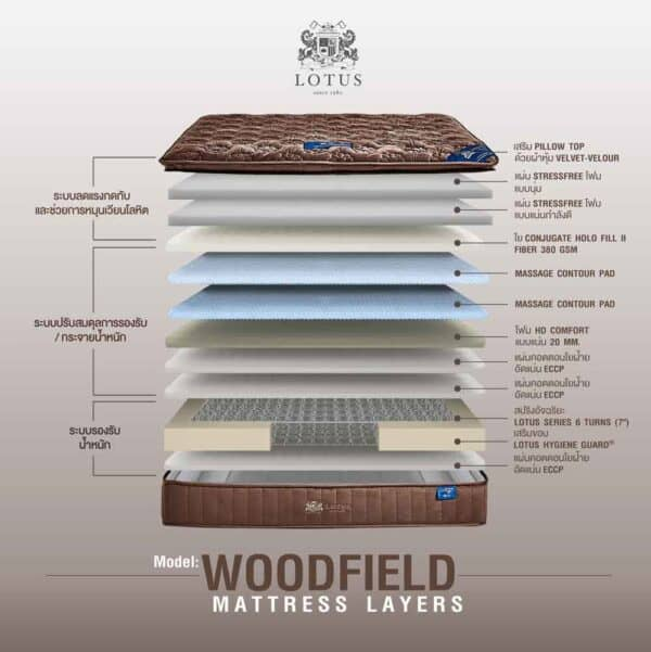 Lotus Mattress Woodfield with Bed Frame Lucia 11