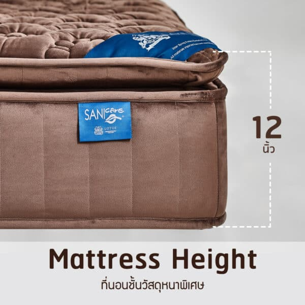 Lotus Mattress Woodfield with Bed Frame Lucia 16