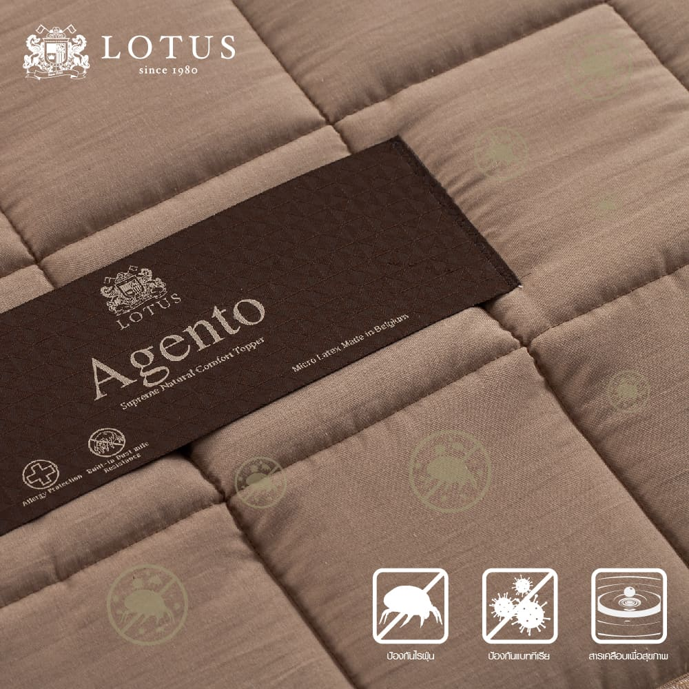 Lotus Latex Topper : AGENTO – Thickness 2 inches 8