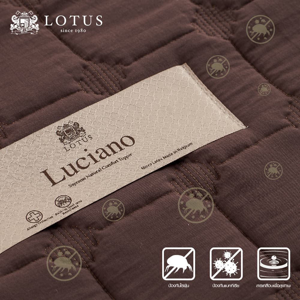 Lotus Latex Topper : LUCIANO – Thickness 2 inches 8