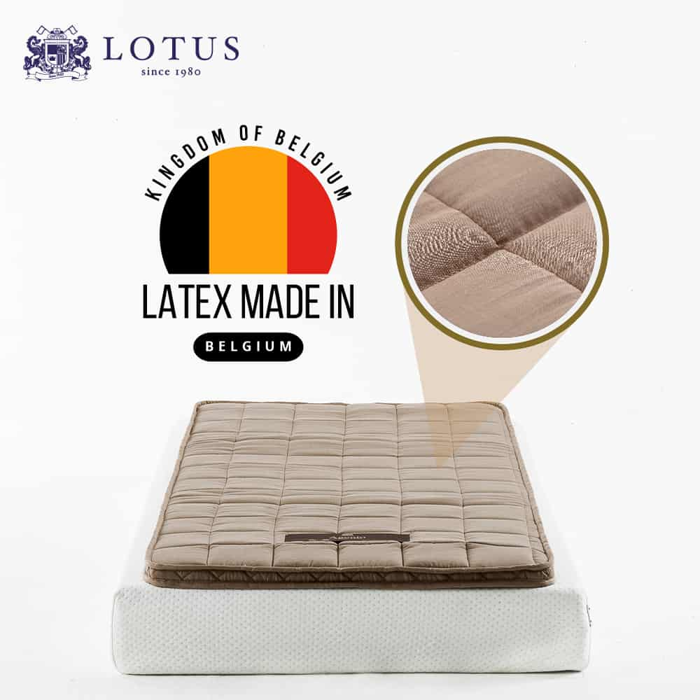 Lotus Latex Topper : AGENTO – Thickness 2 inches 10