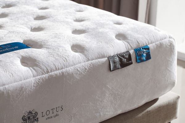 Lotus Mattress – SANFORD 3