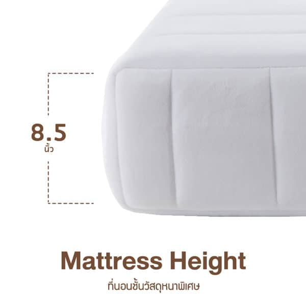 Lotus Mattress - O-Season Plus 6